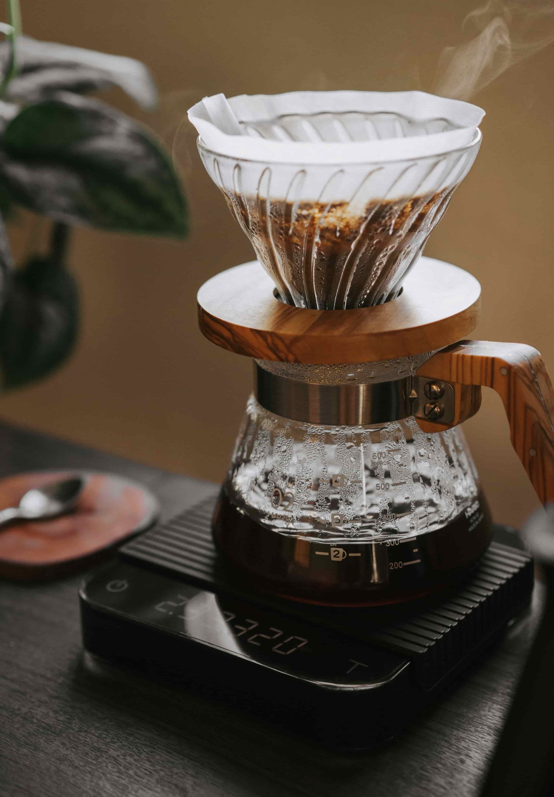 Hario V60 Pour Over Drip Brewing Method Gustos Coffee Puerto Rico Yauco