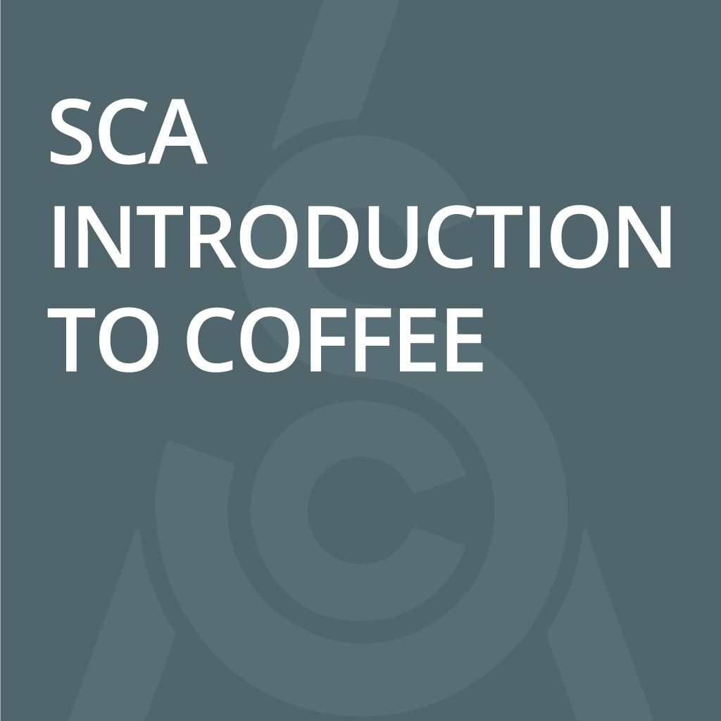 SCA Coffee Skills Program introduction to Coffee